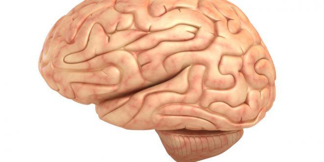 روش شکل گیری آگاهی در مغز