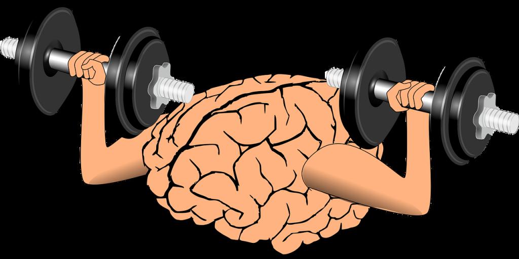 روش های تقویت حافظه1