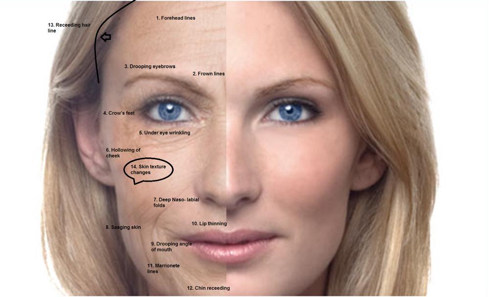 چهره افراد را ببینید شخصیت شان را بشناسید