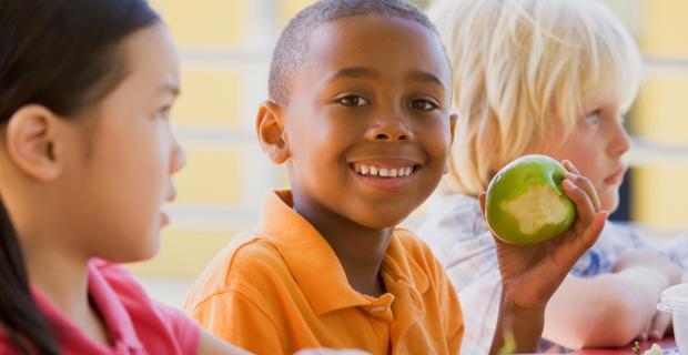 تغذیه های مفید برای افزایش هوش کودک