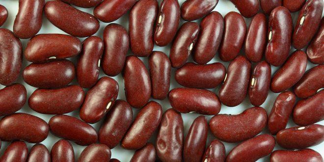 خواص لوبیا قرمز در تغذیه و سلامت