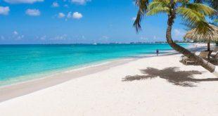 بوی ساحل باعث آرامش میشود