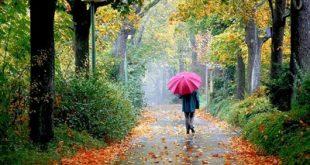 بوی باران استرس را کم میکند