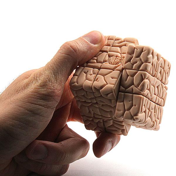 مغز بیماران روانی چگونه عمل میکند؟