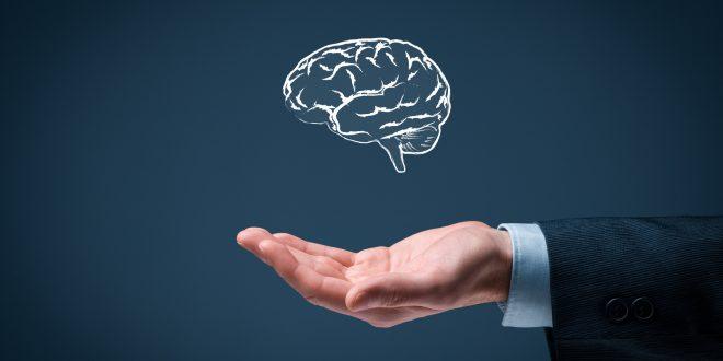 هوش و ارتباط آن با بزرگی سر