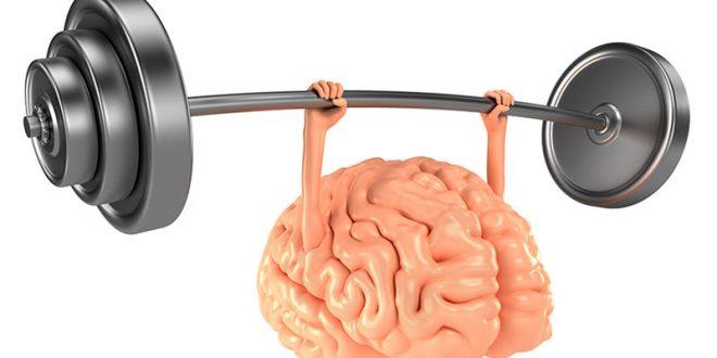 ورزشی برای مغز