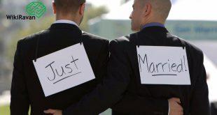 همجنس خواه