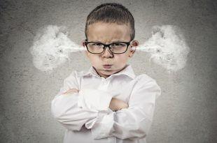 واکنش عملی در برابر خشم