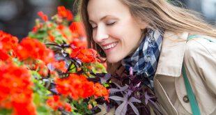 گلها متعادلکننده حالات روحی