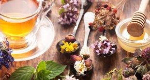 راه های درمان بیخوابی با گیاهان دارویی