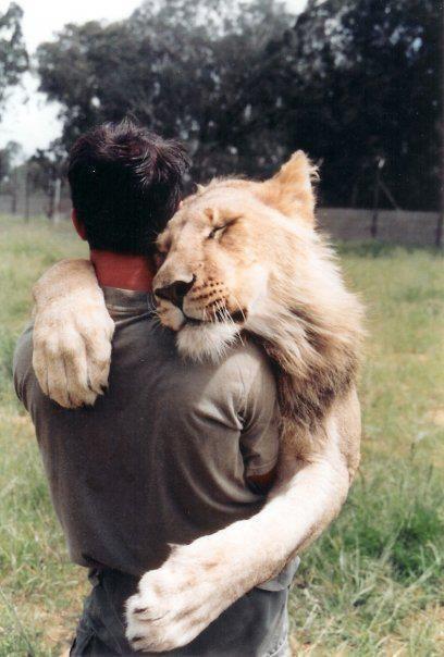 ارتباط با حیوانات