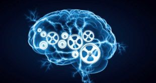 روانشناسی-شناختی